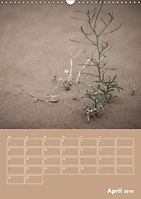 Die Kizilkum-Wüste in Usbekistan - Zwischen Rauheit und Romantik (Wandkalender 2019 DIN A3 hoch) - Produktdetailbild 4