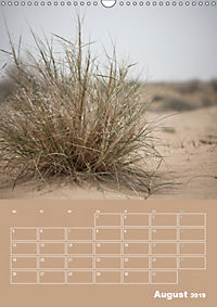Die Kizilkum-Wüste in Usbekistan - Zwischen Rauheit und Romantik (Wandkalender 2019 DIN A3 hoch) - Produktdetailbild 8