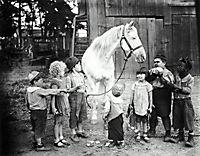 Die kleinen Strolche: 1927-1929 (Stummfilme) - Produktdetailbild 3