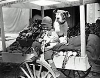 Die kleinen Strolche: 1927-1929 (Stummfilme) - Produktdetailbild 1