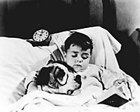 Die kleinen Strolche: 1935-1938 - Produktdetailbild 7