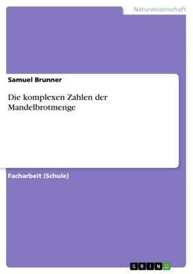 Die komplexen Zahlen der Mandelbrotmenge, Samuel Brunner