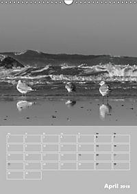 Die Liebe zur See (Wandkalender 2019 DIN A3 hoch) - Produktdetailbild 4