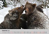 Die lieben Kleinen ... Tierkinder einfach zum Knuddeln (Tischkalender 2019 DIN A5 quer) - Produktdetailbild 10