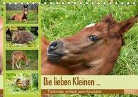 Die lieben Kleinen ... Tierkinder einfach zum Knuddeln (Tischkalender 2019 DIN A5 quer), k.A. GUGIGEI