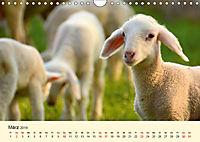 Die lieben Kleinen ... Tierkinder einfach zum Knuddeln (Wandkalender 2019 DIN A4 quer) - Produktdetailbild 3