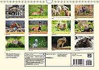 Die lieben Kleinen ... Tierkinder einfach zum Knuddeln (Wandkalender 2019 DIN A4 quer) - Produktdetailbild 13