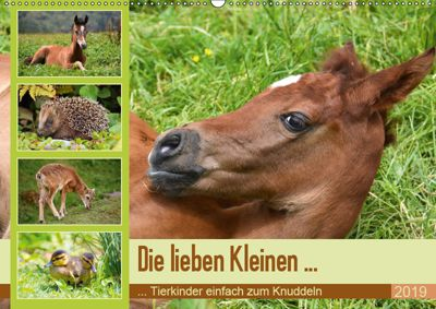 Die lieben Kleinen ... Tierkinder einfach zum Knuddeln (Wandkalender 2019 DIN A2 quer), GUGIGEI