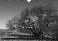 Die Magie der Stille (Wandkalender 2019 DIN A4 quer) - Produktdetailbild 10