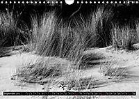 Die Magie der Stille (Wandkalender 2019 DIN A4 quer) - Produktdetailbild 9