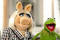 Die Muppets - Produktdetailbild 8
