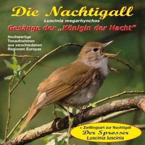 Die Nachtigall, Tierstimmen, Naturgeräusche