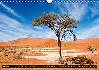 Die Namib (Wandkalender 2019 DIN A4 quer) - Produktdetailbild 6