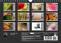 Die Natur als Künstler (Wandkalender 2019 DIN A4 quer) - Produktdetailbild 13