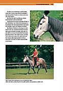 Die Persönlichkeit Ihres Pferdes - Produktdetailbild 8