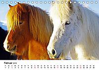 Die Pferde Islands (Tischkalender 2019 DIN A5 quer) - Produktdetailbild 2