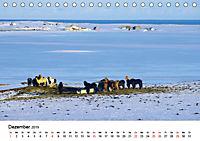 Die Pferde Islands (Tischkalender 2019 DIN A5 quer) - Produktdetailbild 12