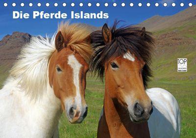 Die Pferde Islands (Tischkalender 2019 DIN A5 quer), Reinhard Pantke