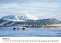 Die Pferde Islands (Tischkalender 2019 DIN A5 quer) - Produktdetailbild 1