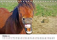 Die Pferde Islands (Tischkalender 2019 DIN A5 quer) - Produktdetailbild 10