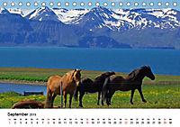 Die Pferde Islands (Tischkalender 2019 DIN A5 quer) - Produktdetailbild 9