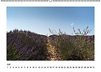 Die Provence zur Lavendelblüte (Wandkalender immerwährend DIN A2 quer) - Produktdetailbild 7
