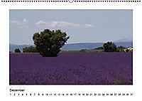 Die Provence zur Lavendelblüte (Wandkalender immerwährend DIN A2 quer) - Produktdetailbild 12