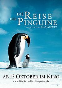 Die Reise der Pinguine - Special Edition - Produktdetailbild 9