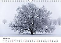 Die Rhön (Wandkalender 2019 DIN A4 quer) - Produktdetailbild 1