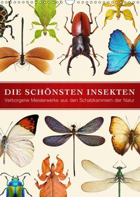 Die schönsten Insekten (Wandkalender 2019 DIN A3 hoch), Wildlife Art Print
