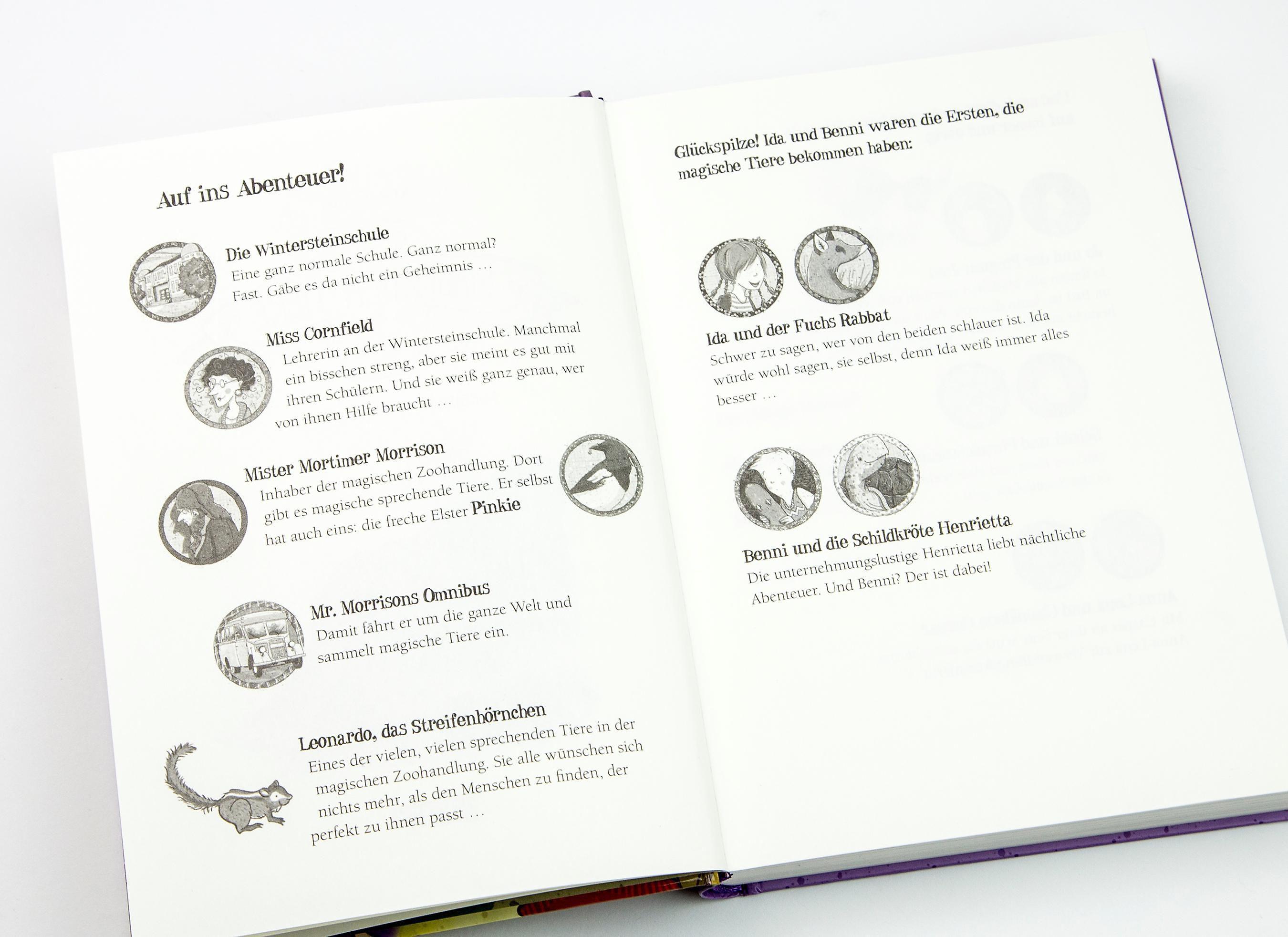 Die Schule Der Magischen Tiere Band 3 Licht Aus Buch