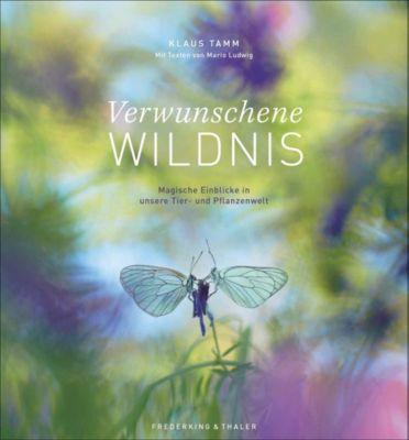 Die Seele der Natur, Klaus Tamm, Mario Ludwig
