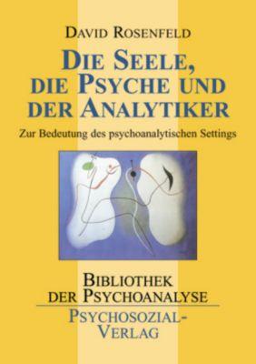 Die Seele, die Psyche und der Analytiker, David Rosenfeld