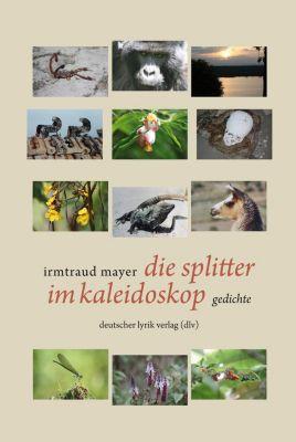 die splitter im kaleidoskop, Irmtraud Mayer