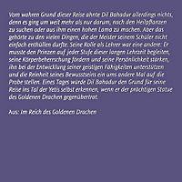 Die Stadt der wilden Götter / Im Reich des goldenen Drachen / Im Bann der Masken, 24 Audio-CDs - Produktdetailbild 3
