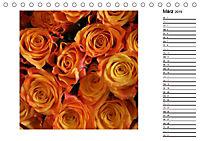 Die vielen Gesichter der Rosen (Tischkalender 2019 DIN A5 quer) - Produktdetailbild 3
