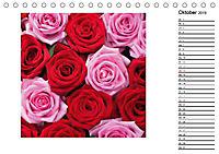 Die vielen Gesichter der Rosen (Tischkalender 2019 DIN A5 quer) - Produktdetailbild 10