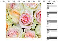 Die vielen Gesichter der Rosen (Tischkalender 2019 DIN A5 quer) - Produktdetailbild 1