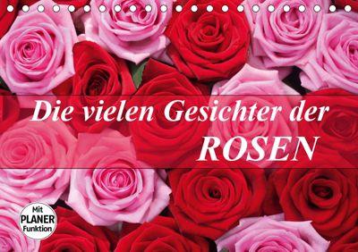 Die vielen Gesichter der Rosen (Tischkalender 2019 DIN A5 quer), Gisela Kruse