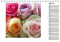 Die vielen Gesichter der Rosen (Tischkalender 2019 DIN A5 quer) - Produktdetailbild 4