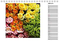 Die vielen Gesichter der Rosen (Tischkalender 2019 DIN A5 quer) - Produktdetailbild 6