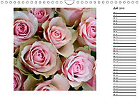 Die vielen Gesichter der Rosen (Wandkalender 2019 DIN A4 quer) - Produktdetailbild 7