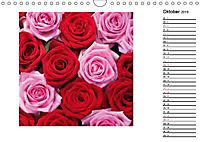 Die vielen Gesichter der Rosen (Wandkalender 2019 DIN A4 quer) - Produktdetailbild 10