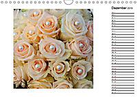 Die vielen Gesichter der Rosen (Wandkalender 2019 DIN A4 quer) - Produktdetailbild 12