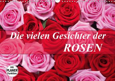 Die vielen Gesichter der Rosen (Wandkalender 2019 DIN A3 quer), Gisela Kruse