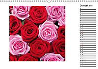 Die vielen Gesichter der Rosen (Wandkalender 2019 DIN A3 quer) - Produktdetailbild 10