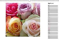 Die vielen Gesichter der Rosen (Wandkalender 2019 DIN A3 quer) - Produktdetailbild 4