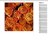 Die vielen Gesichter der Rosen (Wandkalender 2019 DIN A3 quer) - Produktdetailbild 3