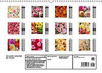 Die vielen Gesichter der Rosen (Wandkalender 2019 DIN A3 quer) - Produktdetailbild 13