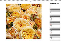 Die vielen Gesichter der Rosen (Wandkalender 2019 DIN A3 quer) - Produktdetailbild 11